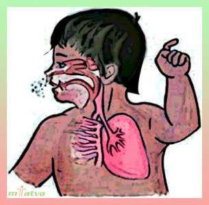 Whooping cough overview